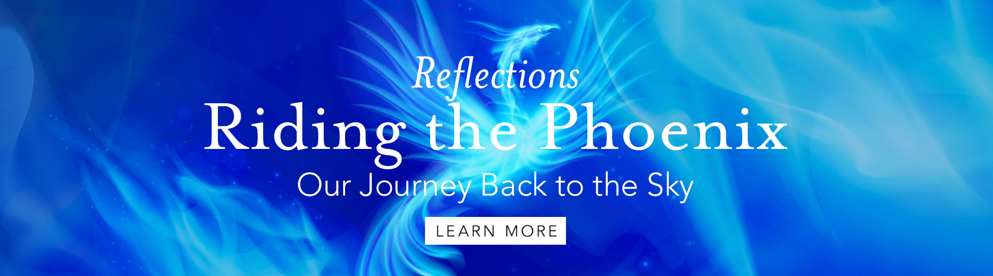 Reflections: Riding the Phoenix