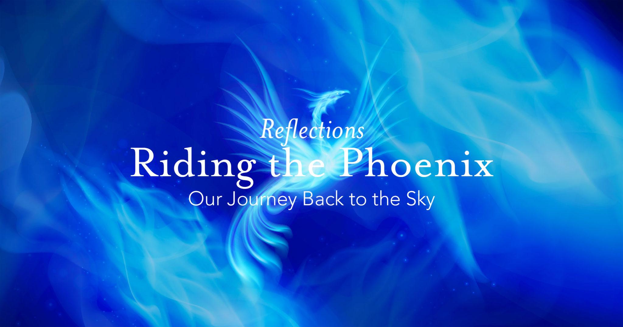 Reflections: Riding the Phoenix