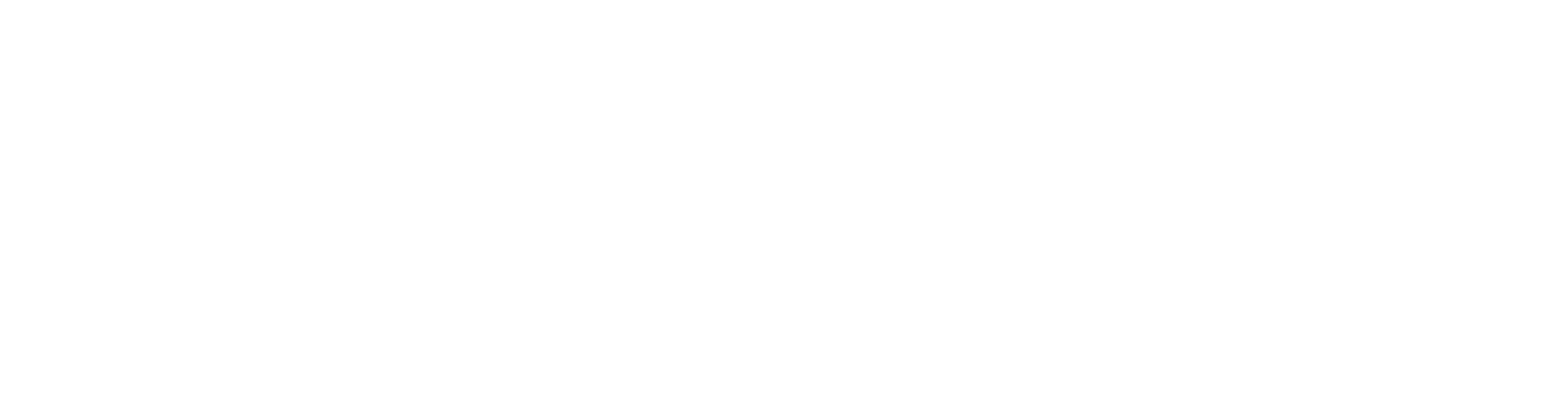 Reflections: Riding the Phoenix - Our Journey Back to the Sky